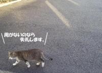 gokinjyo6.jpg